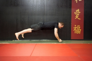"Martial Arts inspired training methods for building genuine strength & power, not just ""gym strength"""