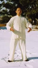 Silk Pj's while standing in Wu-Chi in the snow. This dude has it nailed! You on the other hand, don't.
